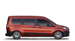 Ford Transit Connect, Petrie Ford