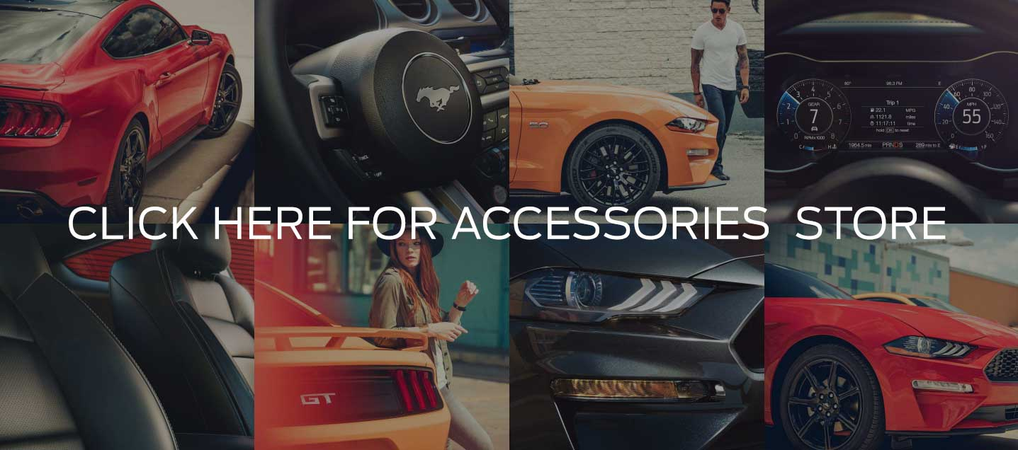 Petrie's Ford Accessories Page