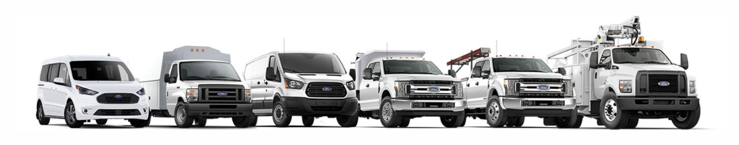 Ford Commercial Vehicles, Petrie Ford