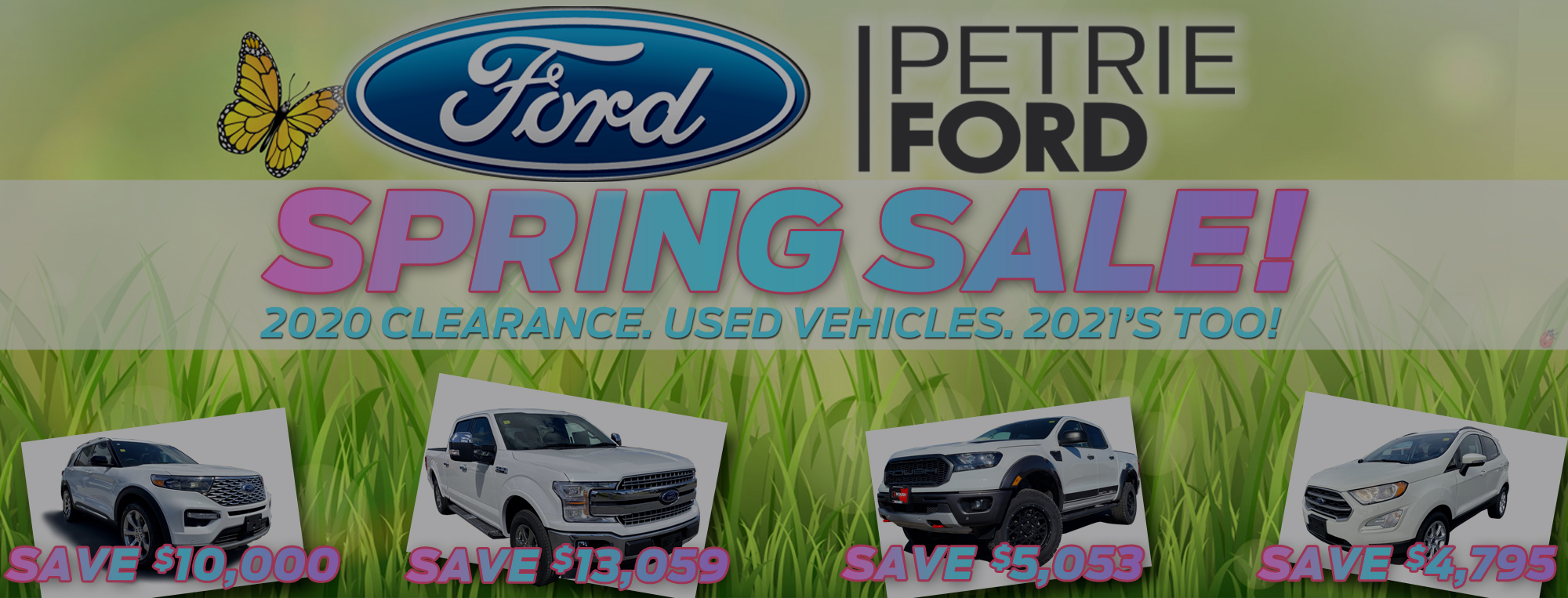 Petrie Ford Monthly Promotions