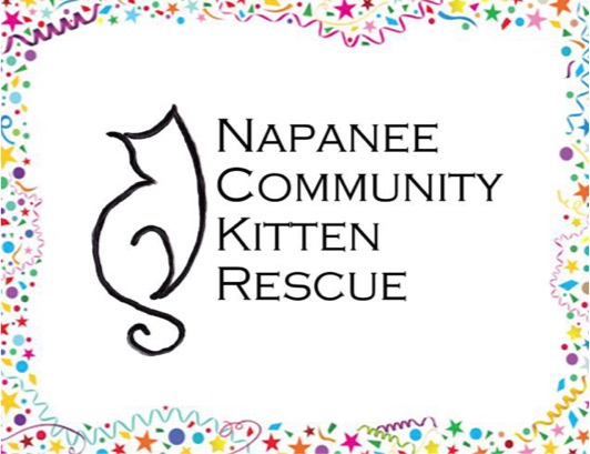 Napanee Community Kitten Rescue